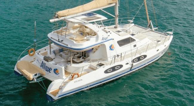Aliwe 53′ cat take $1K off rates